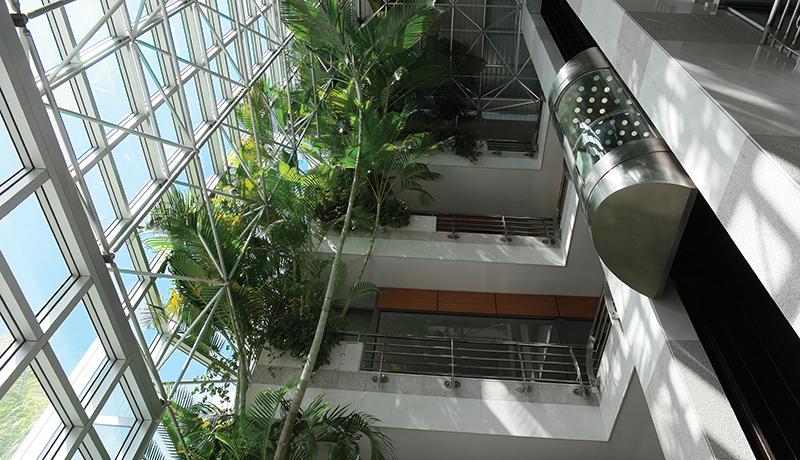 OFFICE PURPOSE BUILDING